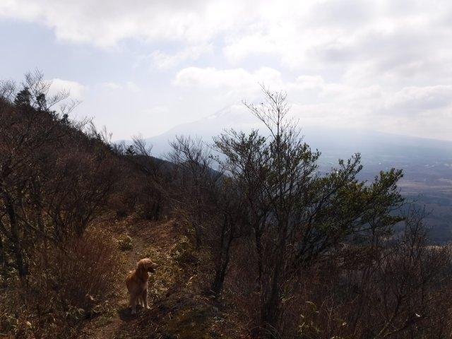 2016-4-12本栖 竜ヶ岳 170