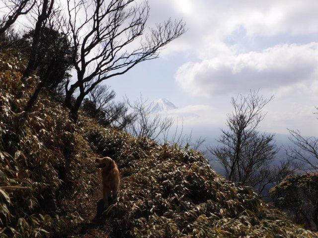 2016-4-12本栖 竜ヶ岳 196