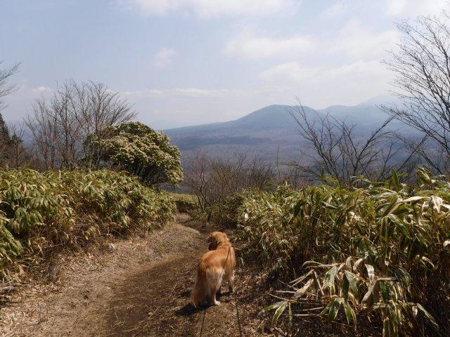2016-4-12本栖 竜ヶ岳 255