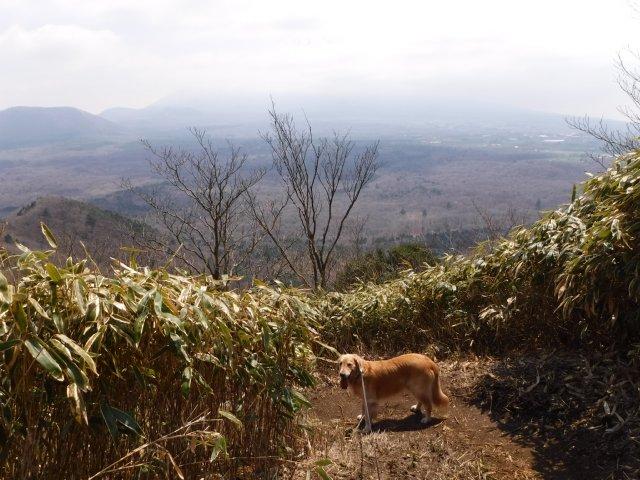 2016-4-12本栖 竜ヶ岳 258