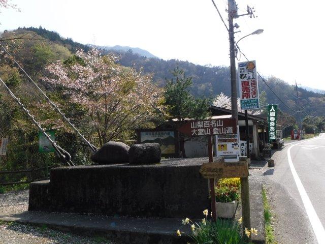 2016-4-12本栖 竜ヶ岳 353