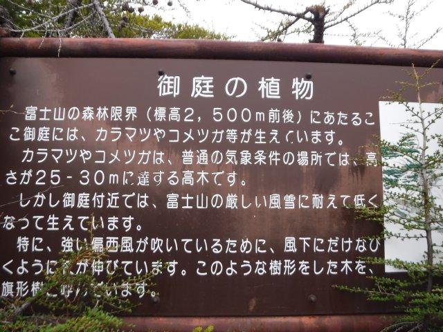 御道中 大沢崩れ 2016.5.20 067