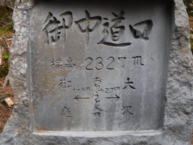 御道中 大沢崩れ 2016.5.20 091