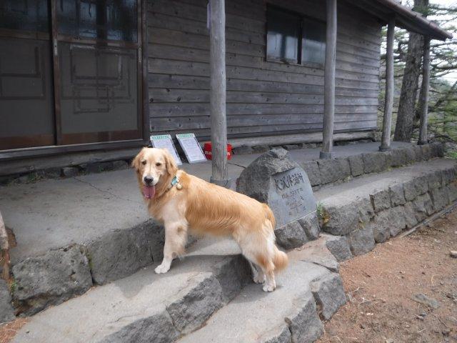 御道中 大沢崩れ 2016.5.20 191