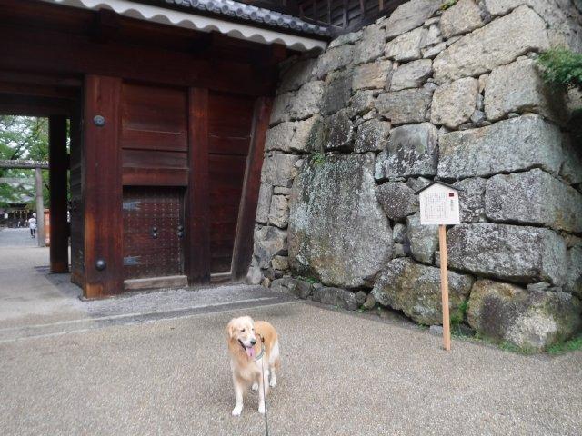2016.9.24上田城 028