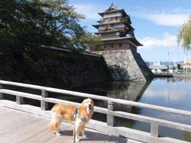 諏訪高島城 2016.9.30 013