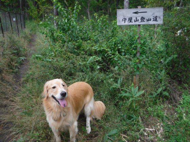 守屋山 2016.10.7 007