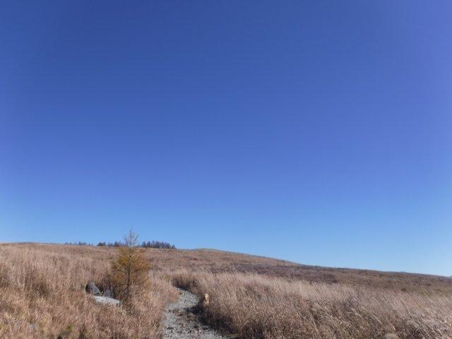霧ヶ峰高原 2016.11.5 006