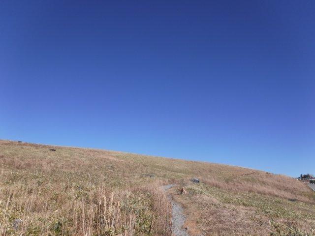霧ヶ峰高原 2016.11.5 015