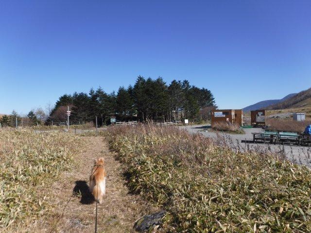 霧ヶ峰高原 2016.11.5 019