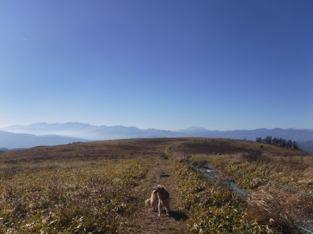 霧ヶ峰高原 2016.11.5 024