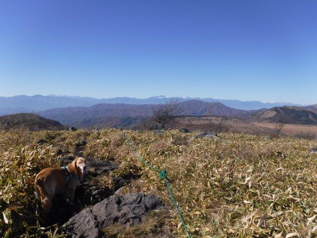 霧ヶ峰高原 2016.11.5 029