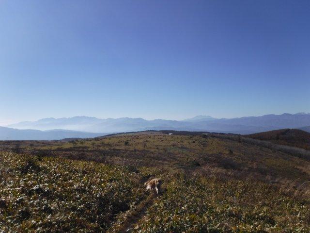 霧ヶ峰高原 2016.11.5 035