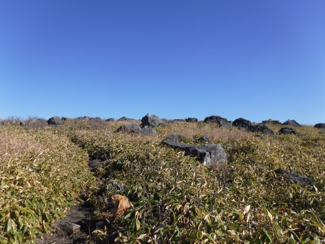 霧ヶ峰高原 2016.11.12 024