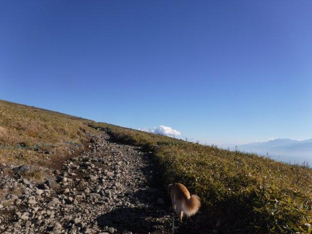 霧ヶ峰高原 2016.11.12 057