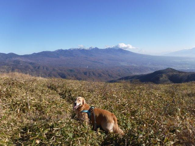 霧ヶ峰高原 2016.11.12 059