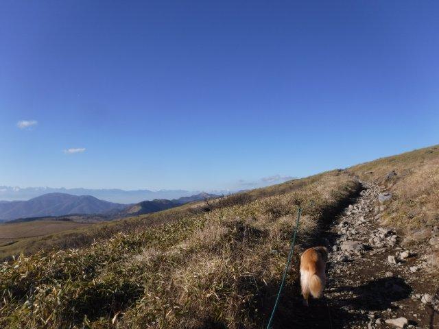 霧ヶ峰高原 2016.11.12 061