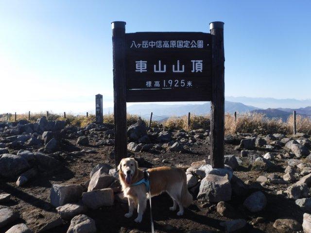 霧ヶ峰高原 2016.11.12 074
