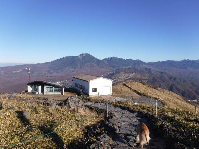 霧ヶ峰高原 2016.11.12 083