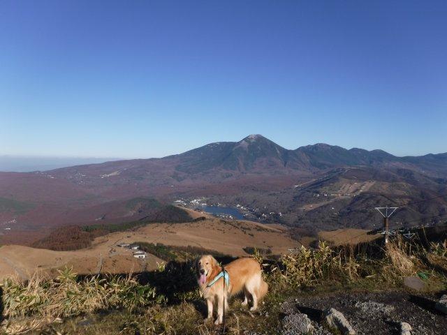 霧ヶ峰高原 2016.11.12 091