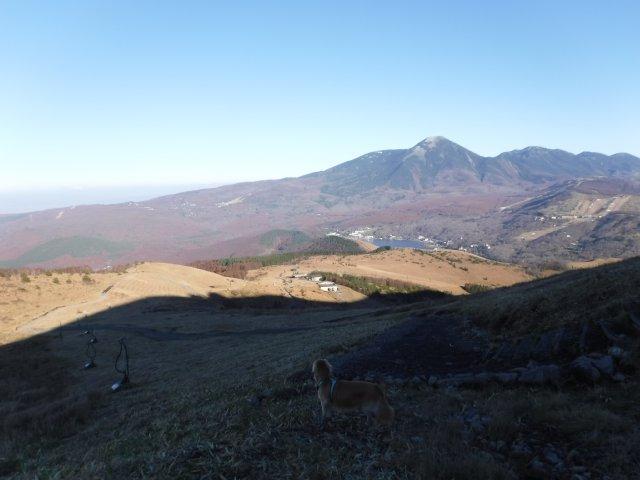 霧ヶ峰高原 2016.11.12 096