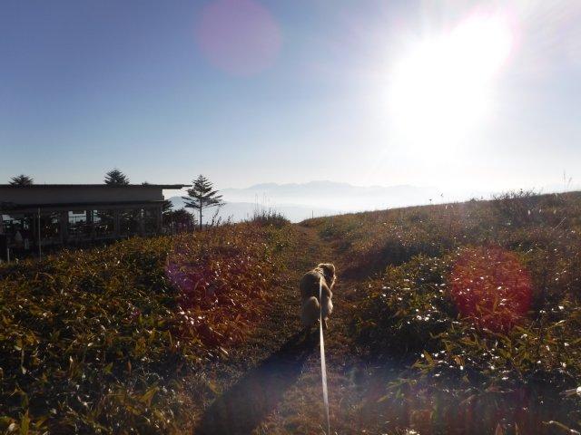 霧ヶ峰高原 2016.11.12 124
