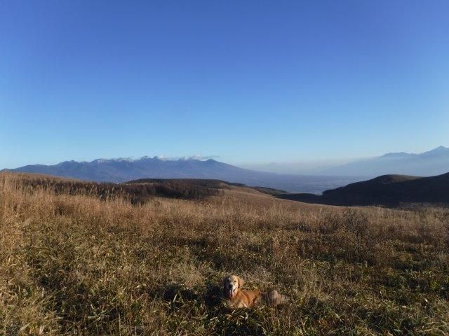 霧ヶ峰高原 2016.11.12 133