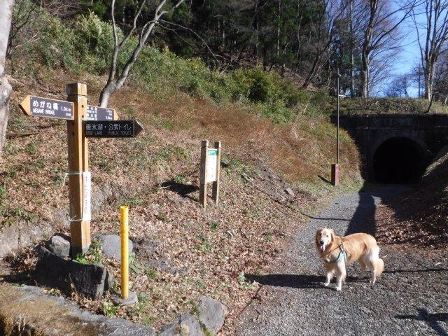 2016.12.10軽井沢めがね橋 019