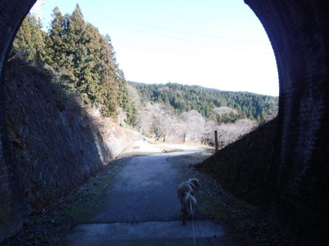 2016.12.10軽井沢めがね橋 020