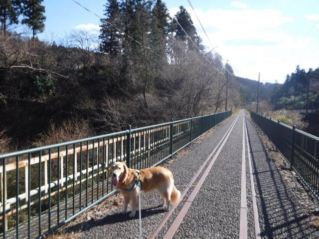 2016.12.10軽井沢めがね橋 026
