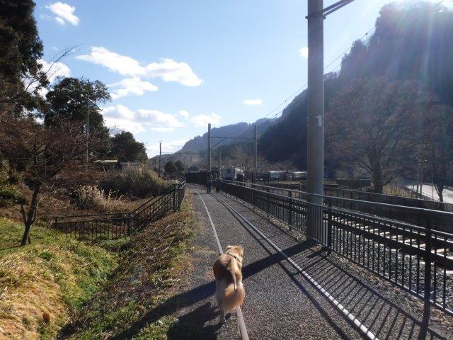 2016.12.10軽井沢めがね橋 033
