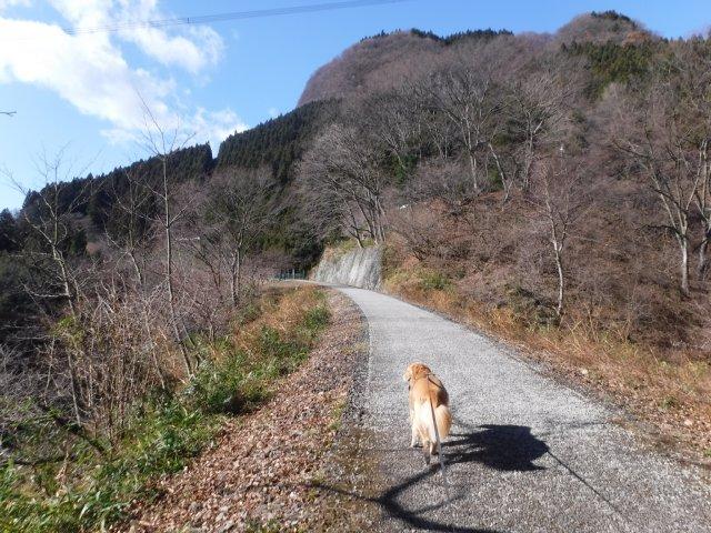 2016.12.10軽井沢めがね橋 044
