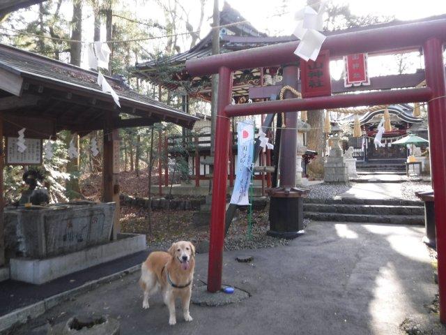 金運神社2016.12.24 009
