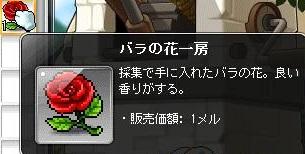 Maple160618_121637.jpg