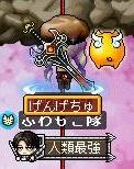 Maple161029_101456.jpg