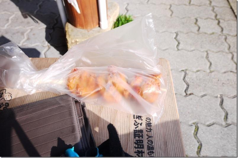 atakayamaP1310426_thumb_thumb