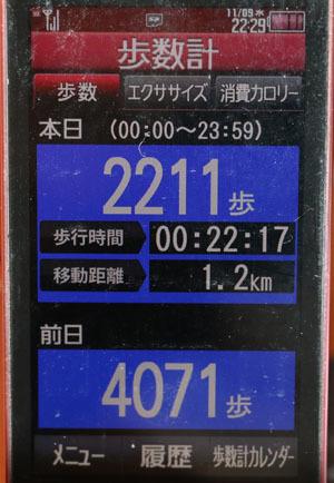 0A1A0006-11-09.jpg