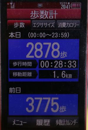 0A1A0032-11-11.jpg