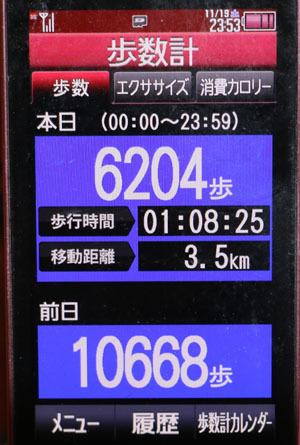 0A1A1088-11-19.jpg