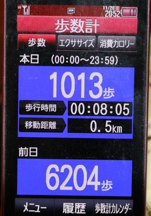 0A1A1206-11-20.jpg
