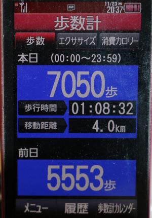 0A1A1810-11-23.jpg