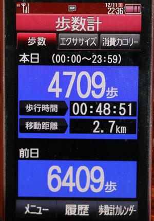 0A1A2999-12-11.jpg