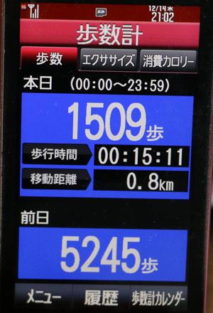 0A1A3163-12-14.jpg