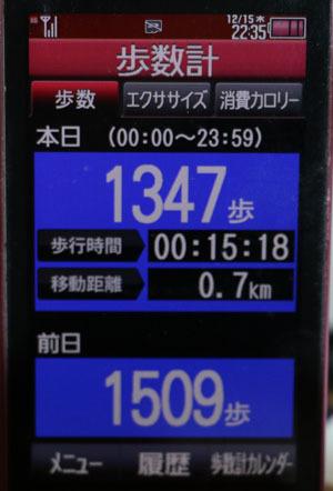 0A1A3171-12-15.jpg
