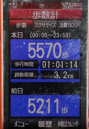 0A1A3289-12-18.jpg