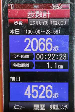 0A1A8704-10-30.jpg
