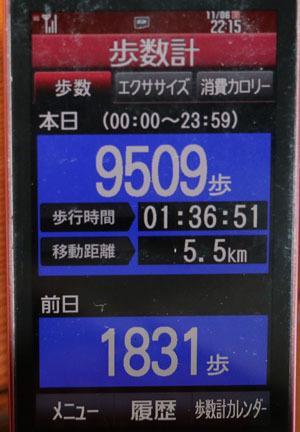 0A1A9955-11-06.jpg