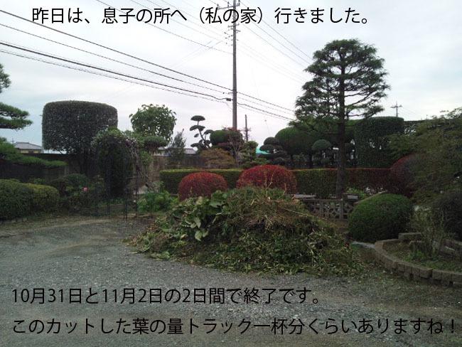 161102_154401-1233.jpg