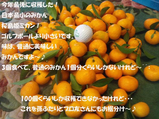 161211_093850-87654567-76543456.jpg