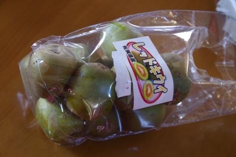 佐賀県産レッドキウイフルーツ